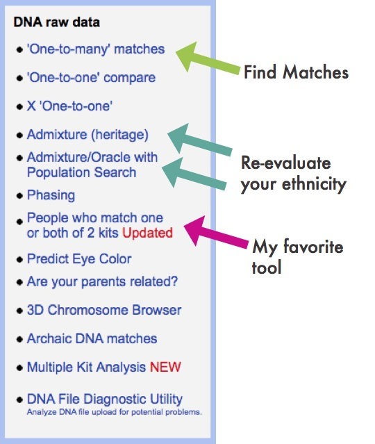 gedmatch-find-matches