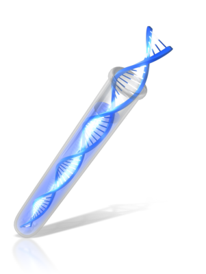 Genetic Genealogy and DNA