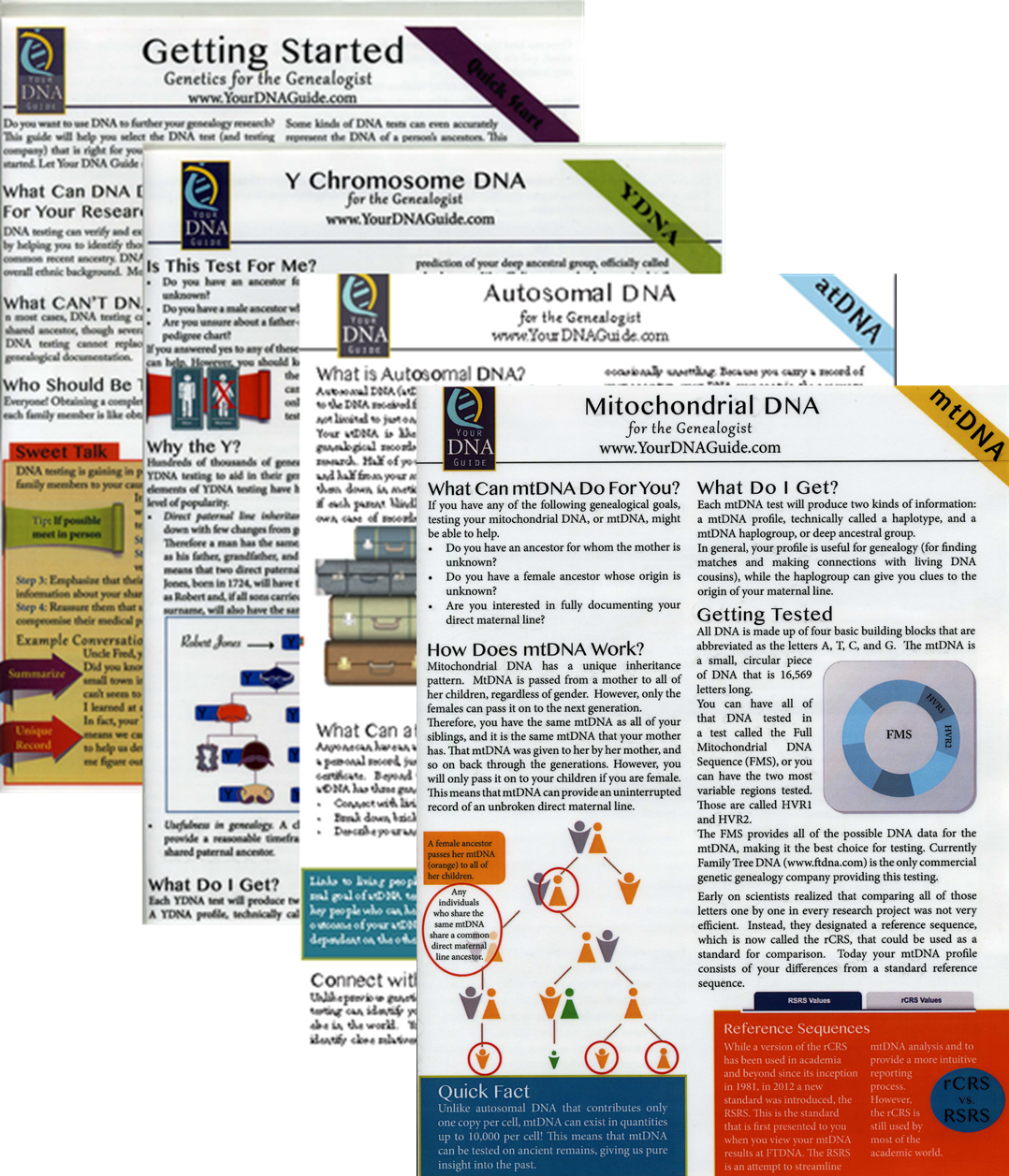 Genealogy DNA Quick Reference Guides Cheat Sheets
