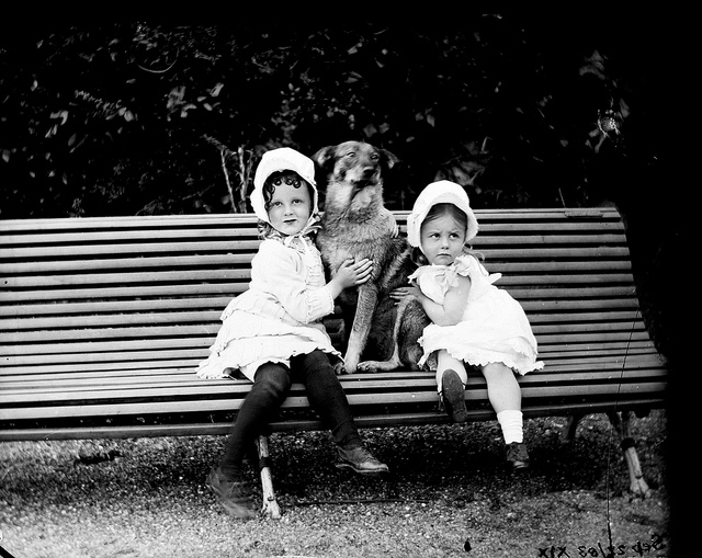 Why Your Genealogy Research Could be Going to the Dogs