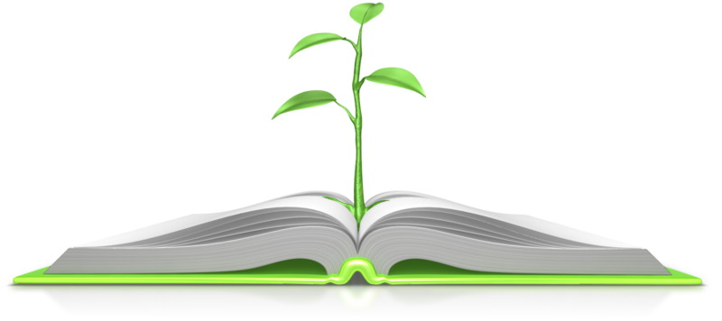 plant_growing_out_of_book_800_wht_9084