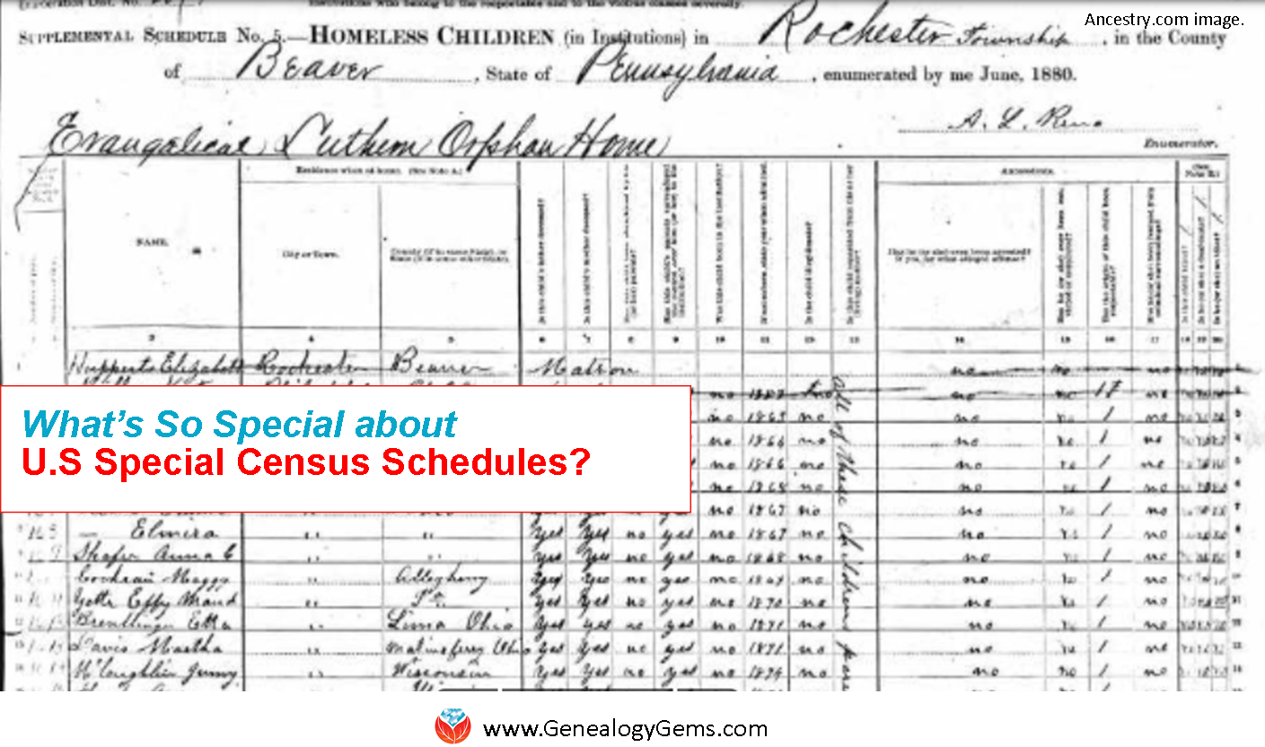 What's So Special about US Special Census Schedules?