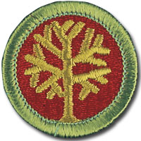 Genealogy 4H Projects and Merit Badges Earn Special Recognition