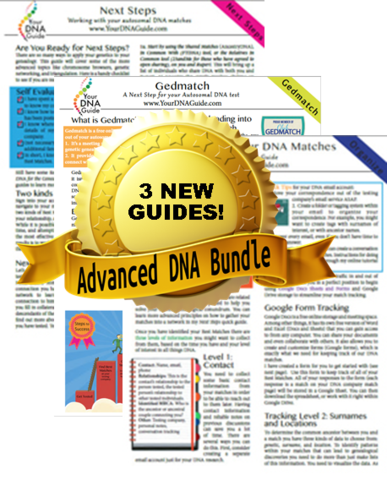 Advanced DNA Bundle by Diahan Southard
