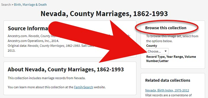 Filter browse only genealogy record collection at Ancestry