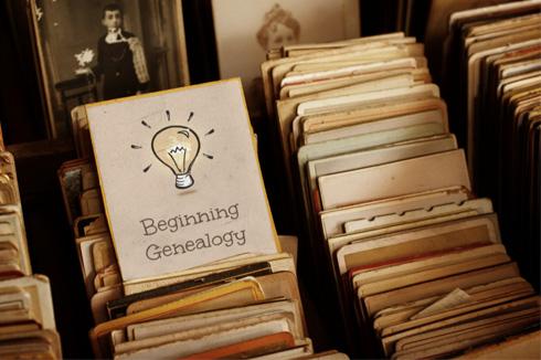beginner genealogy