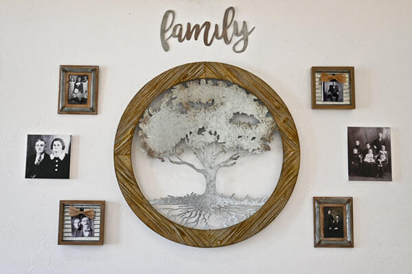 Family history tree wall display